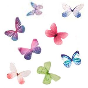 Petits-papillons