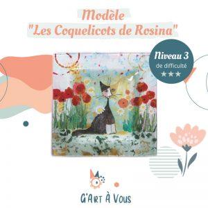 """Fiche Technique""""Les Coquelicots de Rosina"""" Niveau 3"""