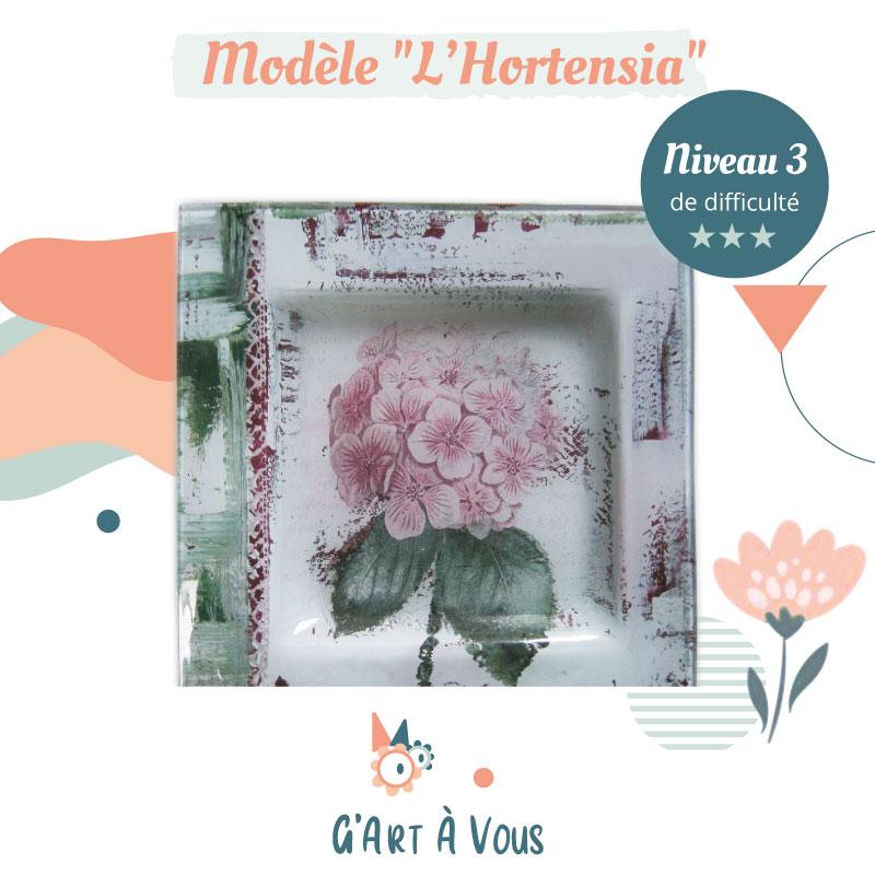 vignette-fiche-technique-hortensia-niveau3
