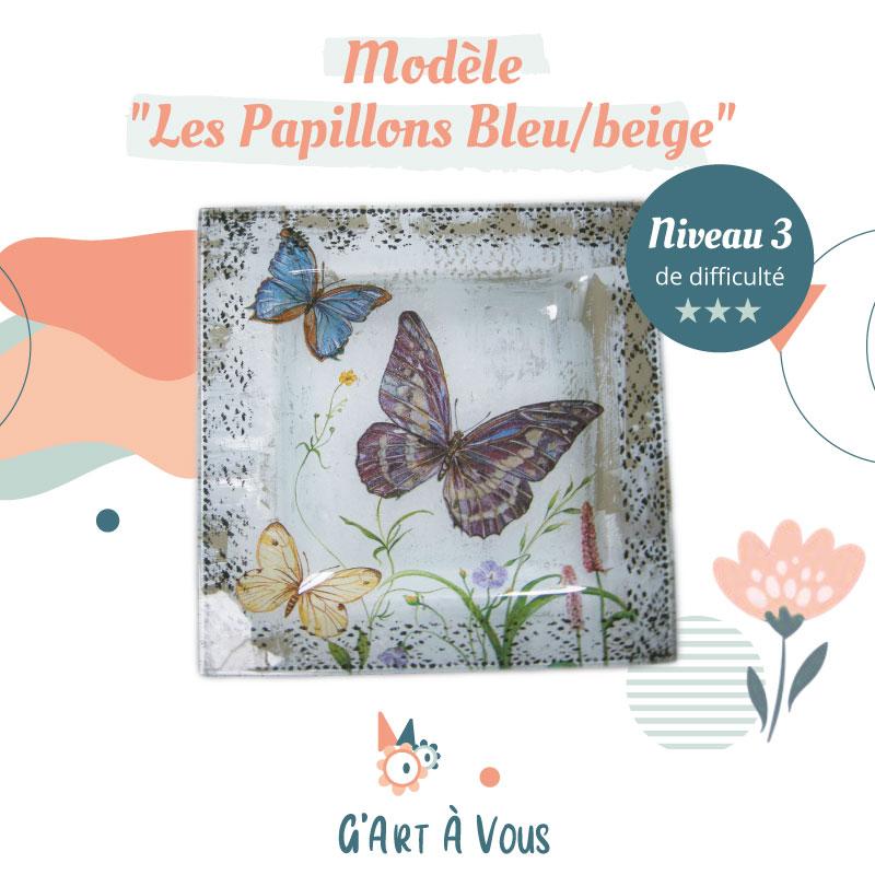 vignette-fiche-technique-papillons-bleus-beige-niveau2